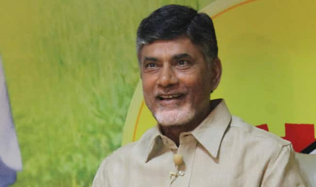 Chandrababu Naidu wants Andhra Pradesh to shine with help from 'land of rising sun'