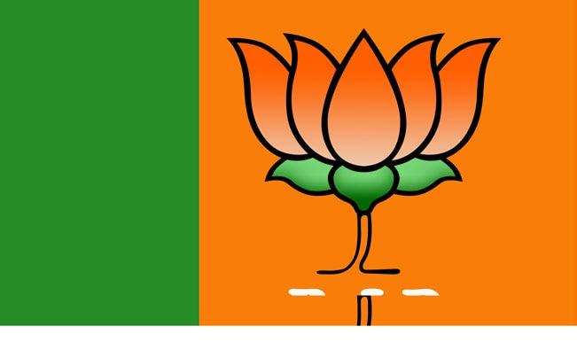 Negative interpretation of Barack Obama's remark on Indian secularism is futile: BJP