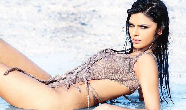 Sherlyn Chopra wants to have soul sex with a girl?