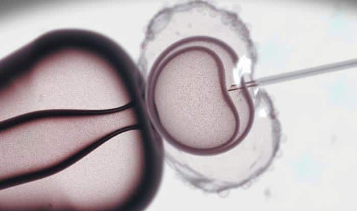 Study Finds Children Born via IVF Face Higher Risk of Cardiovascular Disease