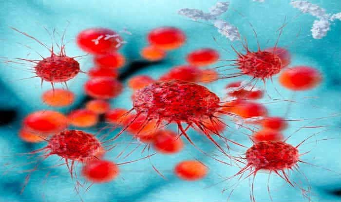 Link between rare form of anaemia, cancer found