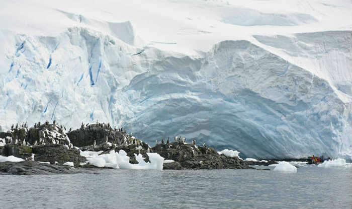 Vast Antarctic marine reserves in focus at Australia talks