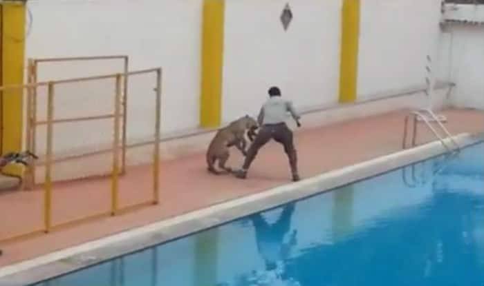 Leopard enters Vibgyor school premises in Bengaluru (Watch Video)