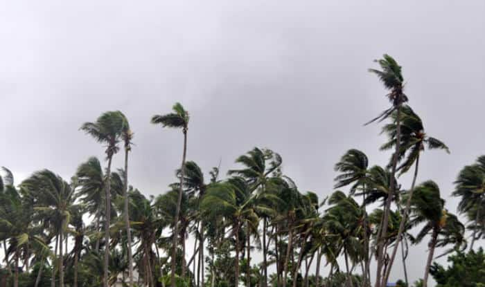 Cyclone Vardah: 2 killed, trees uprooted in Chennai as storm