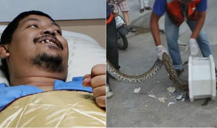 OMG! Python emerges from toilet, bites Thai man's penis (Watch video)
