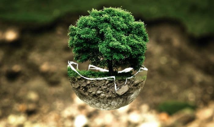 World Environment Day 2018: Celebrations, Significance and Theme to Raise Awareness About Protecting The Environment