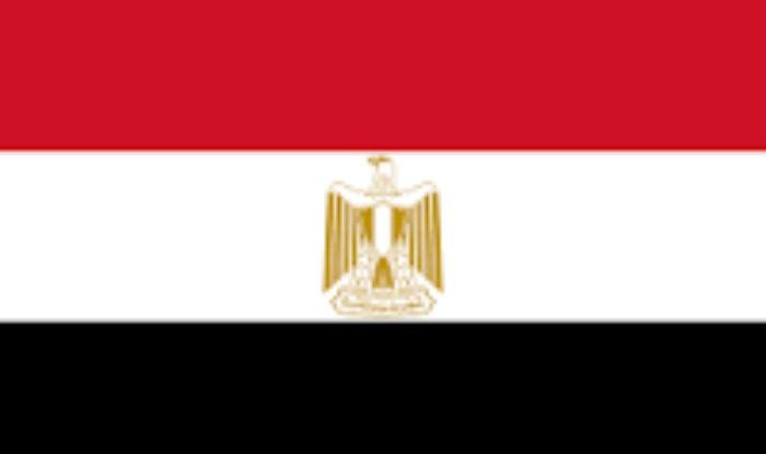 Egypt bans TV Interview with anti-corruption critic Hesham Genena