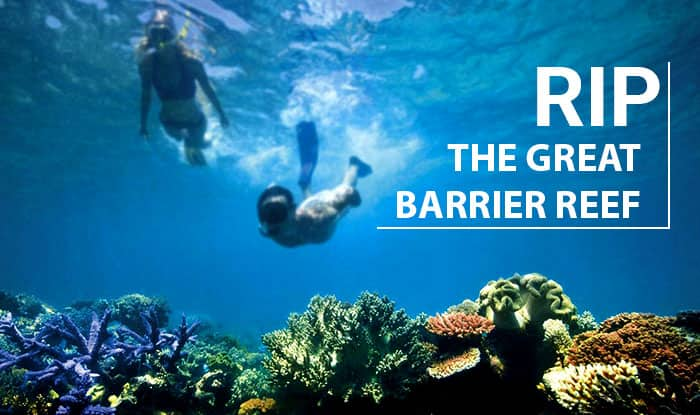 The Great Barrier Reef announced dead, climate change kills nature's magnificent treasure