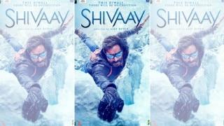 Bollywood Star Couple Ajay Devgn and Kajol Discuss Upcoming Movie 'Shivaay'
