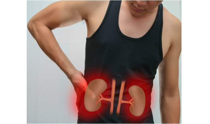 Helping Herbs For Your Kidneys