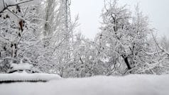 Kashmir in Grip of Severe Cold Wave, Several Regions Witness Sub Zero Temperature