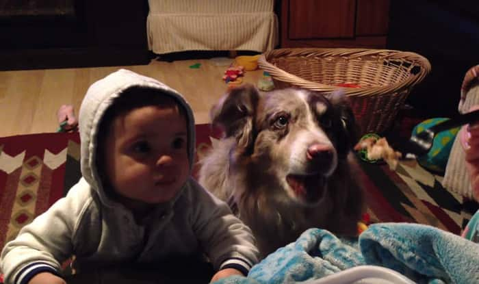 Mom teaches baby to say 'mama', but dog says it first! (Watch Video)