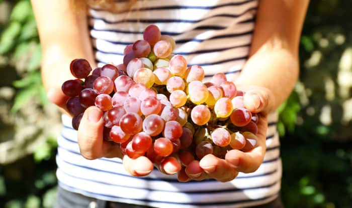Health benefits of grapes: 7 reasons why you should eat more grapes