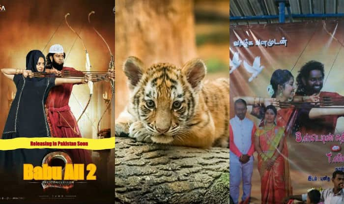 Bahubali 2 movie posters get a makeover by Tamil wedding planners and Pakistani film buffs, Tiger cub named Baahubali as the craze continues!