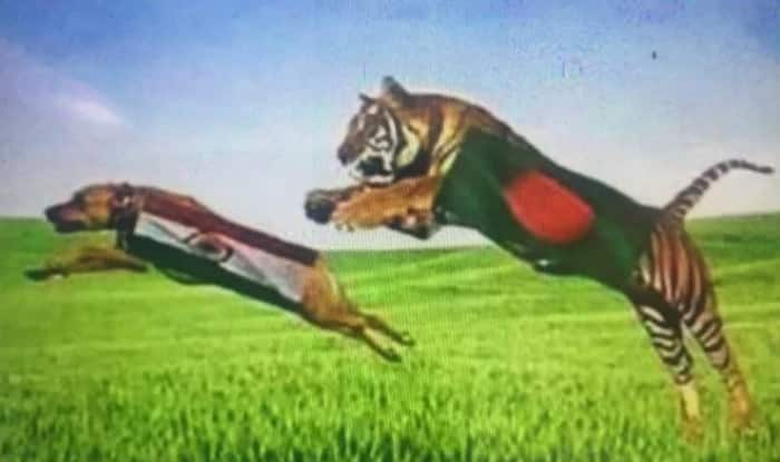 India vs Bangladesh semi-final match dubbed as 'Dog vs Tiger' in ICC Champions Trophy 2017 by Bangladesh fan!