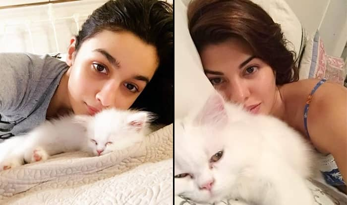 Alia Bhatt, Jacqueline Fernandez, Sunny Leone And More Bollywood Celebs' Pics With Their Cats WillTurn Your Heart Into Mush This International Cat Day