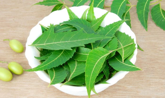 Neem and honey face mask