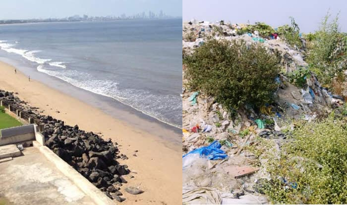 28bd91a70ab Versova Beach Cleanup Suspended After 109 Weeks Due to Government  Indifference and Volunteer Harassment