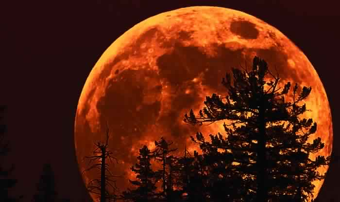 Total Lunar Eclipse / Chandra Grahan on 27th July 2018: Where to Watch Live Streaming on Blood Moon