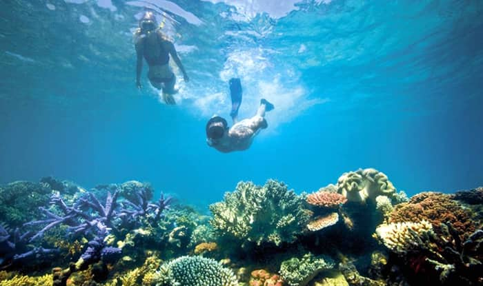 Innovative Challenge up for Grab, Save Great Barrier Reef in Australia and Become a Millionaire