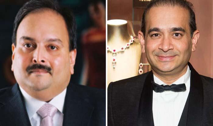 PNB Scam: Know Who is mehul choksi  ।  PNB घोटाला: मामा मेहुल चोकसी के साथ मिलकर नीरव मोदी ने पूरे सिस्टम को बनाया 'मामू'