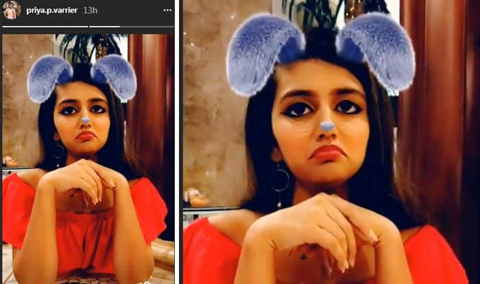 Priya Prakash Varrier Looks Pretty, Attractive and Cute Like a Bunny in Instagram Story. Check Pic
