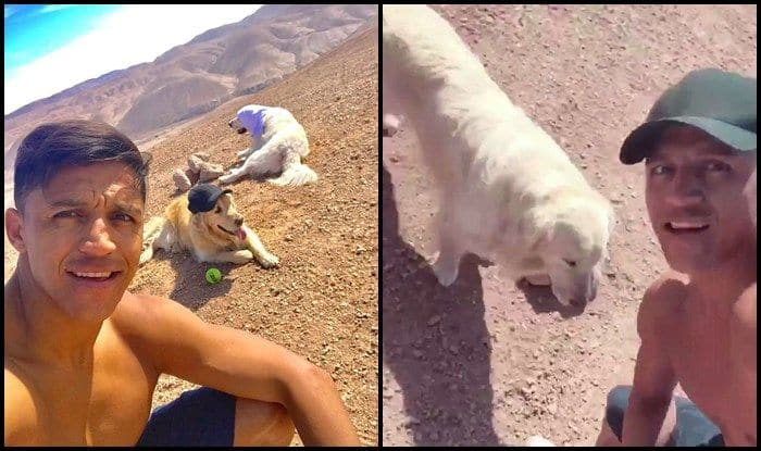 Meet Manchester United Star Alexis Sanchez, The Player Who Trains With Dogs — WATCH