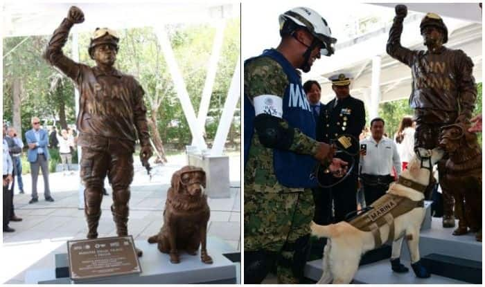 Heroic Dog Gets Her Own Statue For Saving Lives in Wake of Mexico Earthquake
