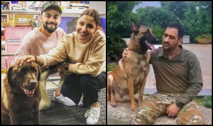 India vs England 4th Test Southampton: Virat Kohli-Anushka Sharma Show Love For Dog, After MS Dhoni Does The Same
