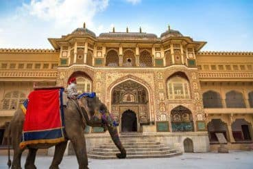 Now Elephant Rides Allowed at Amer Fort in Jaipur And Other Places in Rajasthan After COVID-19 Restrictions - All You Need to Know
