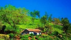 These alluring accommodations will make you fall for the charms of Coonoor