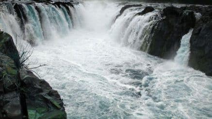Planning a Trip to Hogenakkal Falls? Here's How You Can Reach it From Bengaluru by Road