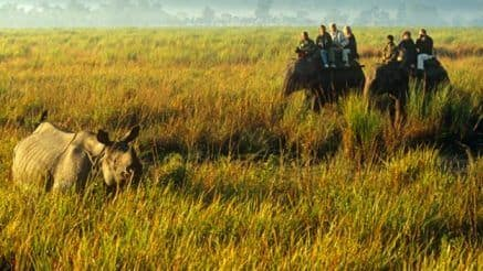 Want to Know The UNESCO Natural World Heritage Sites in India? Read on