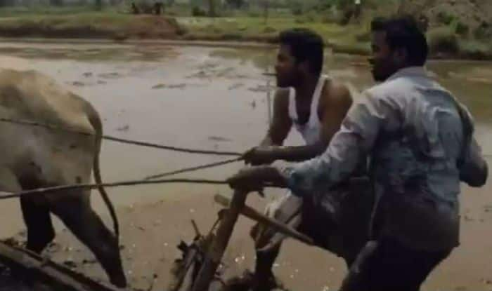 Kiki Challenge: Video of Two Telangana Farmers Grooving to Drake's Hit Song While Ploughing With Bullocks Goes Viral