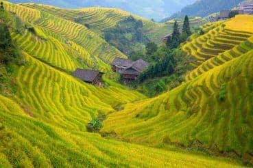Breathtaking Pictures of Longsheng Rice Terraces in China Will Spark Your Wanderlust