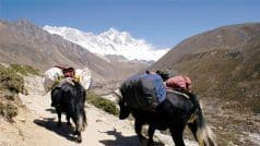 North East India: Four activities to do