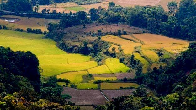 How to Reach Coorg from Pune for a Cool South Indian Coffee Escape