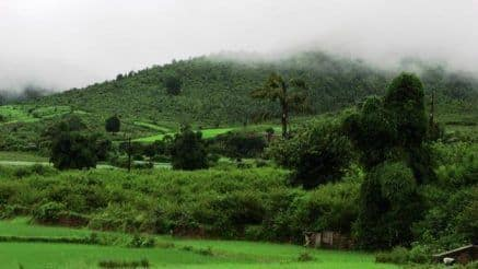 Kashmir of Odisha: Here's How You Can Reach Beautiful Hill Station Daringbadi