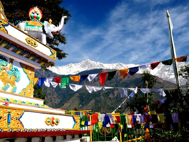 What to do in Dharamsala: Your complete 5-day Dharamsala and McLeod Ganj itinerary
