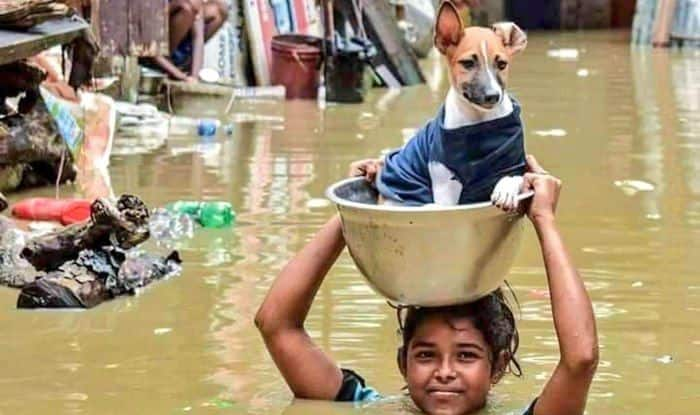 Pakistan CricketerShoaib Malik Extends Greetings on Eid-al-Adha, Prays For Easy Rehab ofThose Affected by Kerala Floods