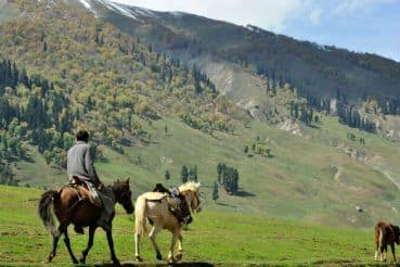 These 5 Hill Stations in India Are Perfect For Summer Vacation With Family