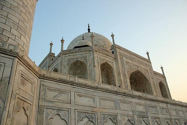Taj Mahal Starts to Turn Green, Black Due to Insects' Excreta