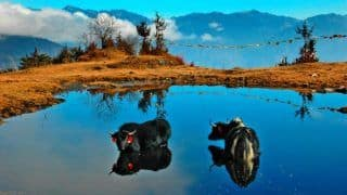 Why Arunachal Pradesh's Penga Teng Tso Should be on Your Bucket List