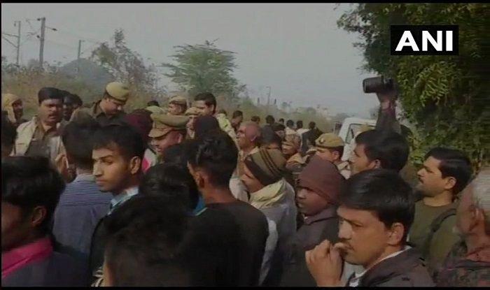 Uttar Pradesh: Skeletons of Six Cows Found in Aligarh's Bhogpur; Investigation Underway