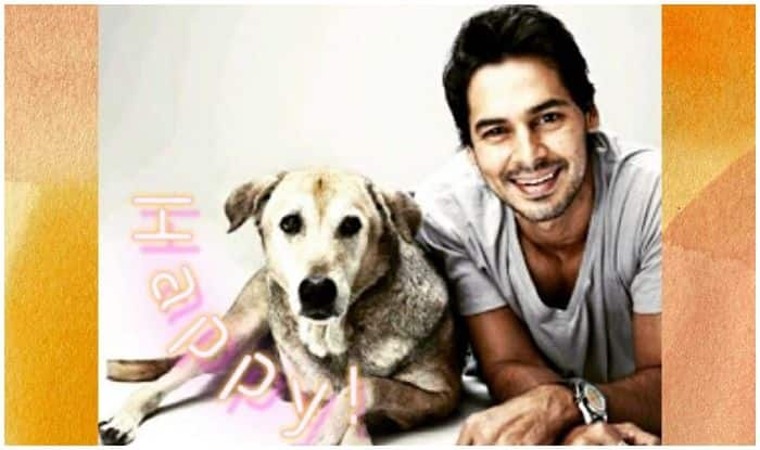 Dino Morea Stresses on Importance of Being a Pet-Friendly Country, Says loves Idea of Pet Carnivals