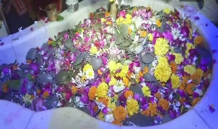Devotees offer live crabs to Lord Shiva