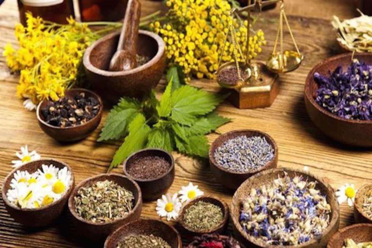 World Kidney Day 2019 6 Ayurvedic Remedies For Healthy Kidneys India Com