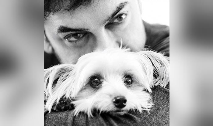 Aamir Khan and his pet dog Imli