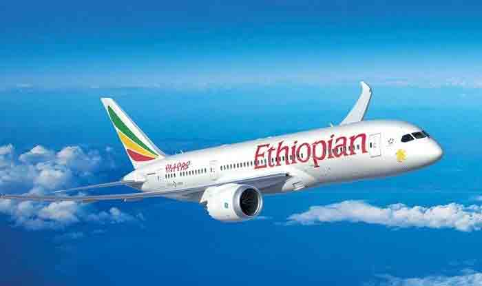 Ethiopian Airline Crash: DGCA Orders Grounding of Boeing 737-MAX Planes With Immediate Effect