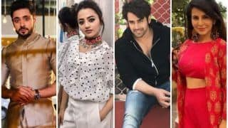 Holi 2019: TV Actors Pearl V. Puri, Adnan Khan, Helly Shah And Others Share What Festival of Colours Means to Them